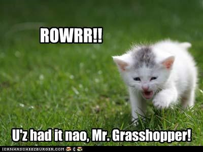 ROWRR!! U'z had it nao, Mr. Grasshopper!