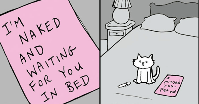 Collection of funny cat comics to celebrate Caturday.