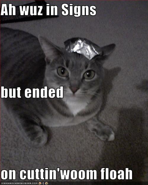 Cheezburger Image 3416640512