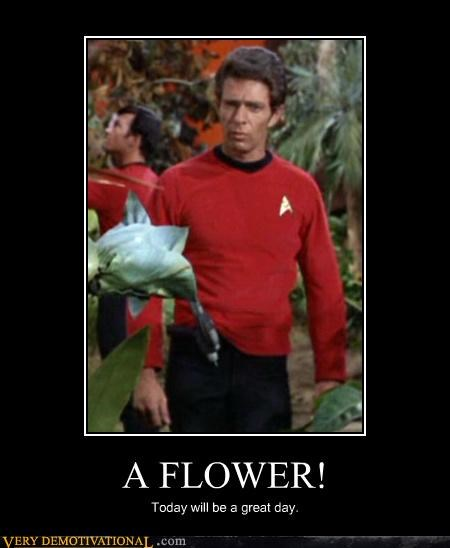 great day,Flower,Star Trek
