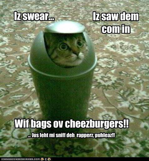 Cheezburger Image 3418886144