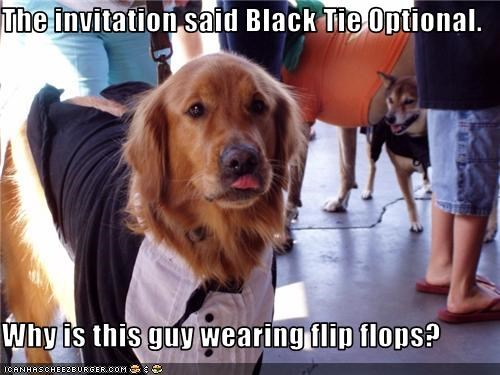 fashion,flip flops,golden retriever,Party,tie,tuxedo