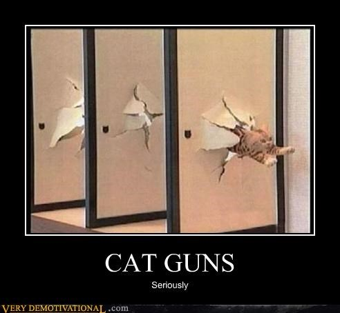 CAT GUNS Seriously