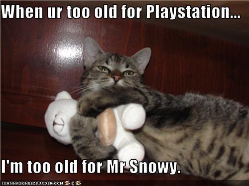 old stuffed animals toys - 3420240896