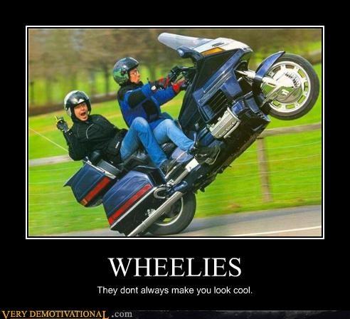 crazy wheelie idiots motorcycle - 3423952640