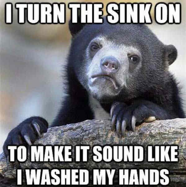 funny bear confessions monday memes