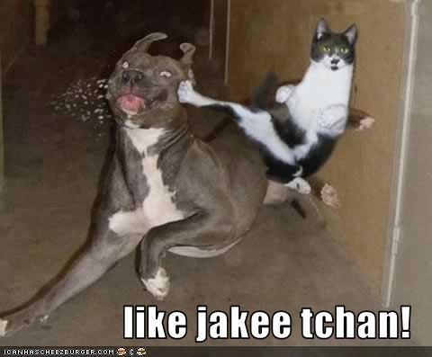 like jakee tchan!