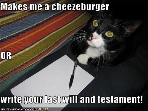 Cheezburger Image 3426274048