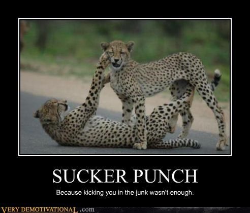 Sucker Punch cheetah fight