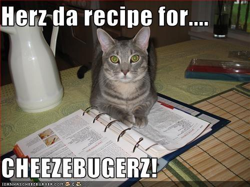 Cheezburger Image 3427307008
