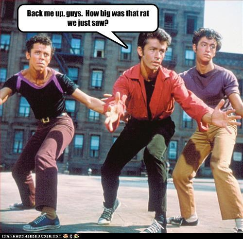 actor dancing george chakiris musical rat west side story - 3427624704