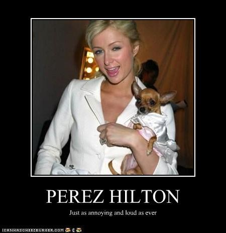 PEREZ HILTON Just as annoying and loud as ever