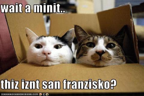 box oh noes oops - 3427881728