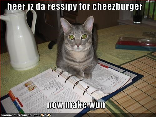 Cheezburger Image 3428620032