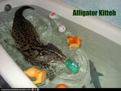 alligator bath look a like toys water - 3428685568