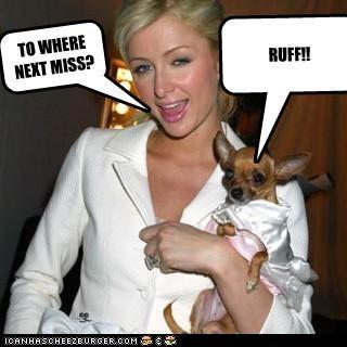 TO WHERE NEXT MISS? RUFF!!