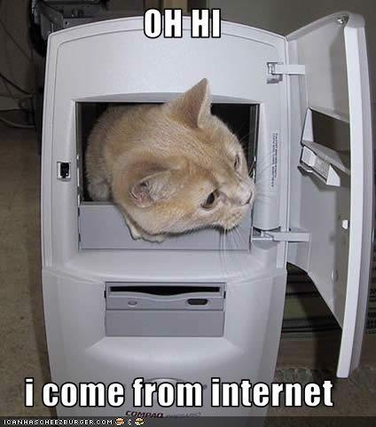 computer internet o hai - 3430574592
