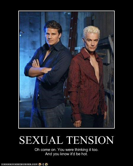 angel Buffy the Vampire Slayer David Boreanaz gay hot james marsters sexy vampires - 3435385600