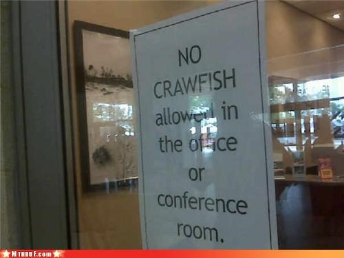 awesome co-workers not,basic instructions,crawfish,crustaceans,dickhead co-workers,dickheads,fridge politics,illlegal food,office kitchen,official sign,paper signs,passive aggressive,racism,screw you,signage