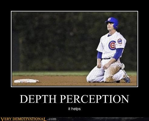 cubs,idiots,depth perception