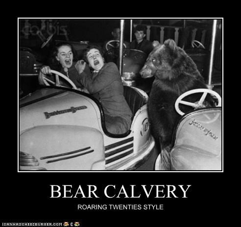 amusement park,bear,bumper cars,photograph