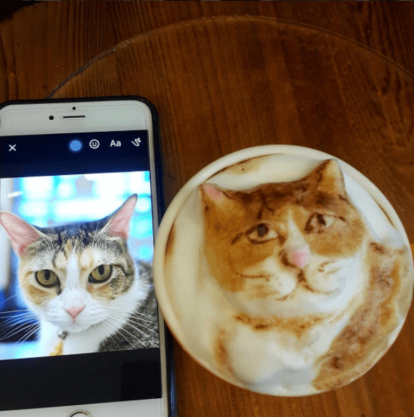 coffee house in Taiwan turns your coffee to a pet portrait