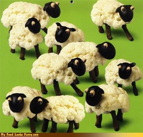 animals cauliflower farm fruits-veggies sheep wool - 3440270080