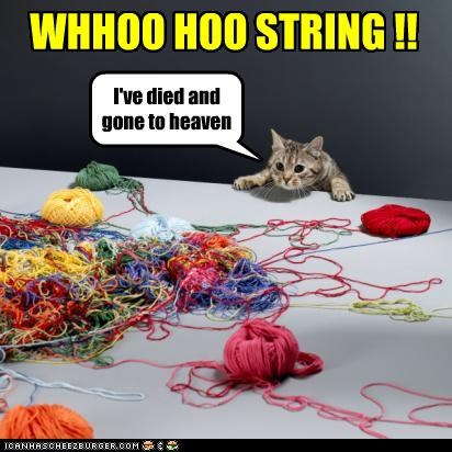 WHHOO HOO STRING !! I've died and gone to heaven