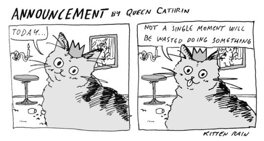 Funny drawings of cats life