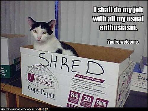 box grumpy shredding work - 3442760448
