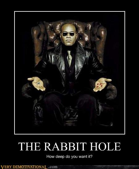 THE RABBIT HOLE How deep do you want it?