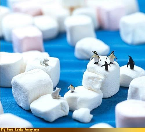 cold ice icebergs marshmallow penguins polar bears Sweet Treats - 3444381184