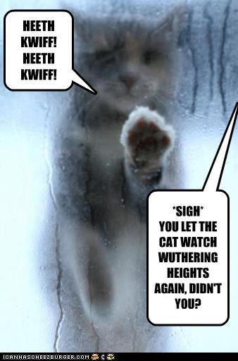 again,calling,caption,captioned,cat,emily bronte,glass,heathcliff,imitating,Movie,novel,pawing,scene,sigh,watch,window,wuthering heights