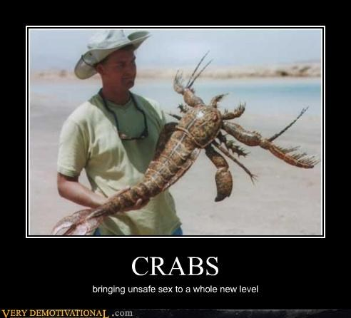 CRABS bringing unsafe sex to a whole new level