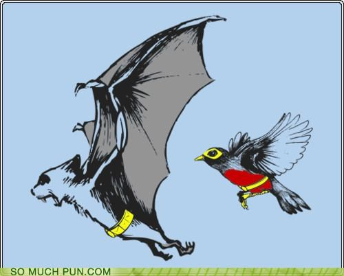 bat,batman,bird,robin,win