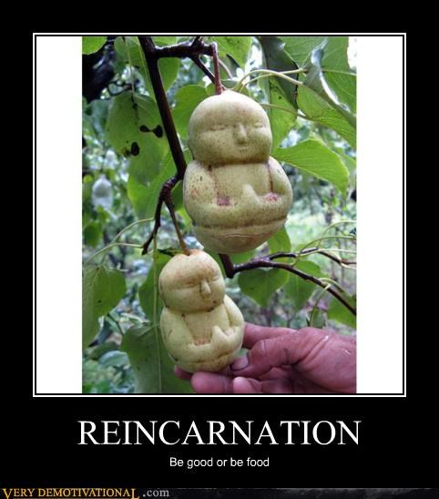 food good reincarnation