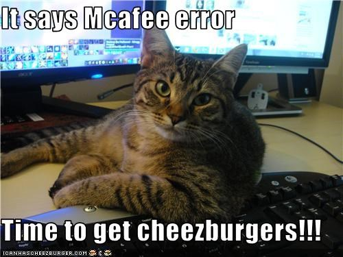 Cheezburger Image 3448936960