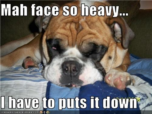 boxer face heavy sleep tired