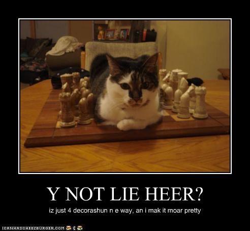Y NOT LIE HEER? iz just 4 decorashun n e way, an i mak it moar pretty