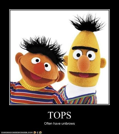 TOPS Often have unibrows