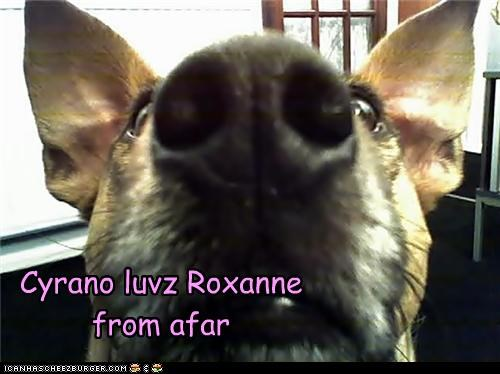 Cyrano luvz Roxanne from afar