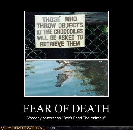 sign fear Death animals