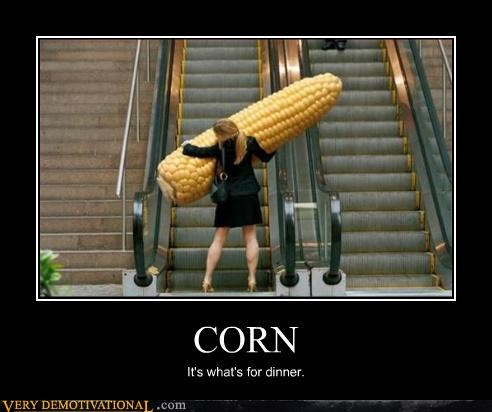 corn,wtf,ladies,huge