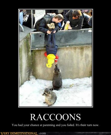 kids,raccoon,parenting