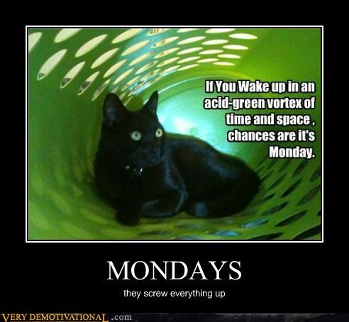 cat horrible mondays weird - 3454037760