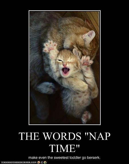 "THE WORDS ""NAP TIME"" make even the sweetest toddler go berserk."