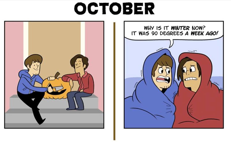web comics of expectations vs reality