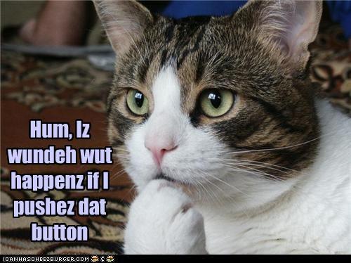 Cheezburger Image 3456166144