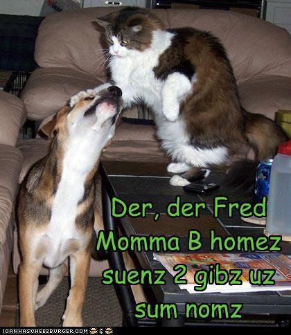 Cheezburger Image 3457158144