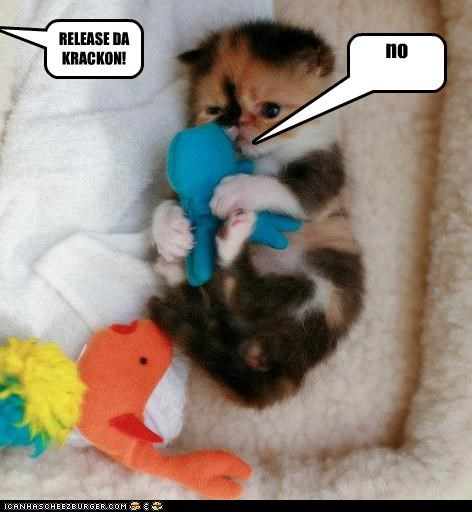 caption captioned cat cuddling do not want do want Hall of Fame holding kitten kraken no phrase Pirates of the Caribbean refusing release stuffed animal toy - 3457296896